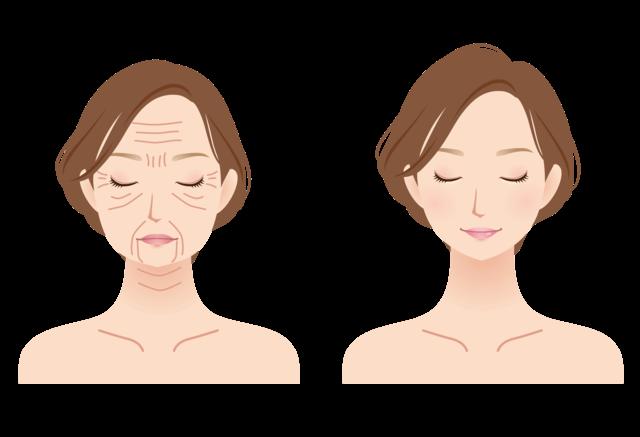 加齢による肌の衰え